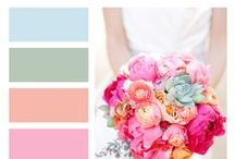 Color Your World ~ Color Palettes / Whether you are painting a room, creating crafts, cake or cookie decorating or deciding what colors to wear. Use color palettes to inspire your newest creation.