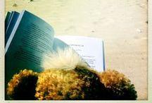 Scriere creativă / www.kjmecklenfeld.nl