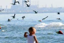 Black Sea / Beautiful pics with Black Sea, especially with littorals from Romania.  Fotografii frumoase cu Marea Neagră, în mod special cu litorale din România.  https://www.haisitu.ro/oferte-litoral