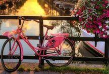 Holland Travel / Beautiful pics from Holland. -- Fotografii frumoase din Olanda. https://www.haisitu.ro/oferte-olanda-ta150