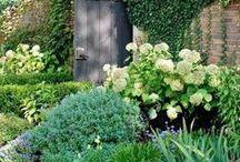 | GREENERY / Gorgeous gardens we adore