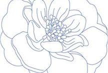 Цветы / Просто добавь цвет