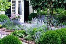 Amo jardins / Jardinagem e paisagismo / by Maria de Lourdes Bley