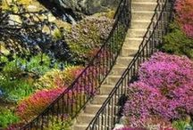 One Step At A Time! / Stairway to....