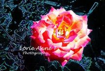 Beautiful photography / by Lorie Anne