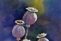 seeds art by Henri Olama / Realizzazioni dei bambini. Laboratori ideati e condotti da henri Olama