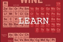 Learning about Wine