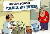 Humor / Chistes, caricaturas.