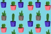 Plants / We have a lot of plants between us and they are great for bringing a bit of nature indoors and brightening up your flat or house. The great thing is you can plant in household objects too.. some very inspiring interiors in here