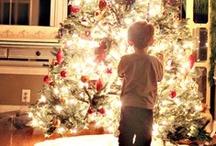 Holiday : Winter & Christmas