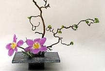Ikebana & Floral Arrangement / Japanese Ikebana & Floral Arrangement ideas