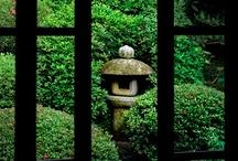 Asian Garden Idea