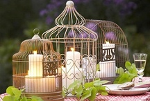 Birdcages -  Upcycle Reuse Recycle Repurpose DIY / by Tickled Pink Memorabilia Mall