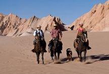Tierra Atacama / O cenário é único no mundo: o impressionante altiplano do Deserto de Atacama e seus cânions, lagos, salares, gêiseres, dunas e piscinas termais. Criado para oferecer o máximo em conforto, hospitalidade e serviços, o Tierra Atacama integra-se harmoniosamente à paisagem espetacular e à cultura andina e ainda convida a uma programação recheada de explorações e esporte na natureza.