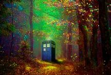 Doctor Who and the T.A.R.D.I.S.