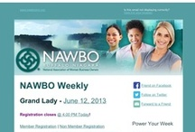 NAWBO Events / NAWBO Buffalo Niagara is a leading advocate for emerging and established women business owners who aspire to higher levels of opportunity, challenge, and success. We provide:  1. Educational and networking opportunities 2. Encouragement through mentoring and support 3. Promotion and acknowledgement of the pioneer spirit