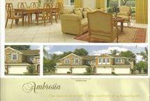 Portofino Meadows in Florida / A new development called Portofino Meadows in Florida