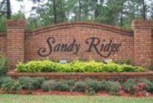 Sandy Ridge in Orlando Florida / A development started in 2012 called Sand Ridge in Orlando, Florida.