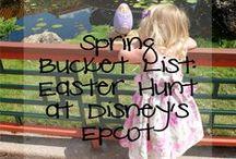Walt Disney World | Travel