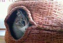 [DIY] Pour les chats