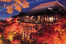 秋の旅に出かけよう♪