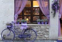 Bike & Car