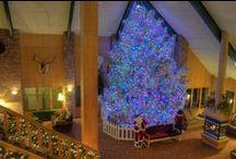 Christmas at Fairmont / Christmas