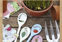 Love my kitchen plot / Whatever the size of your plot, we have plenty of ideas to create your own kitchen plot.