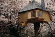 Treehouses / Treehouses