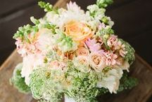 Wedding Ideas / Wedding Inspirations