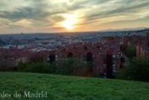 Qué ver/hacer en Madrid / Todo el ocio en Madrid