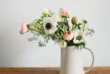 F l o W e R s. / flowers
