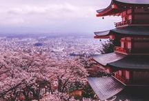 Japan / Discover Japan, its pink cherry blossom trees, its imperial palaces, and its specific food without forgetting Tokyo known for skyscrapers and pop culture ! Join one of our language school to improve your japanese. https://www.wep.be/fr/japon