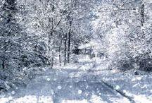 winter / #winter #nature #snow