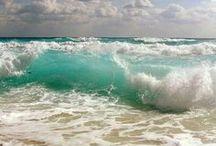 ocean water beach
