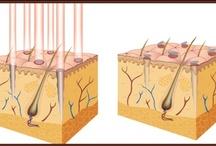 Zabiegi laserowe / Laserowe leczenie zmian naczyniowych Mamy 20-letnie doświadczenie w laserowym leczeniu skórnych zmian naczyniowych. Jako pierwszy ośrodek w Polsce sprowadziliśmy laser argonowy do leczenia naczyniaków. / by CTL Wrocław