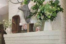 Fireplaces & Mantels / by Janie