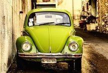 • Volkswagen • Bettle •
