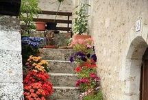 Gardens / Our inspiration for designing garden layouts