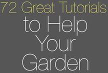 Helpful Gardening Tips