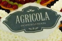 Agricola Blooming Party / A magical night filled with smiles, nature and life.