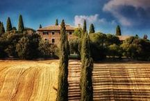 Spring in Tuscany / Spring is when the vines reawaken, as do all our senses. A beautiful time to visit Dievole! Go for a walk on our Natural Path under the Tuscan sun or relax with a good read and a great view. Book it at www.dievole.com / by Dievole