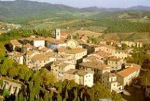 Travel Destination: Small Towns in Tuscany / Colle Val D'Elsa, Monteriggioni, Radda in Chianti and Asciano are just a few of the beautiful small towns you can visit in the Siena area. / by Dievole