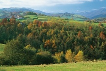 Navarra, naturaleza que emociona. / Todos estos paisajes están en Navarra. ¿A que te sorprendes?