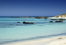 Tropical Waters / Exotic Beaches / The most beautiful beaches in the world.  / by Kevin Tucker