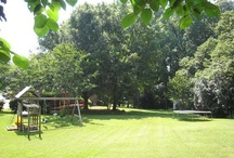 341 Dublin Court, Gastonia, NC 28054 / FOR SALE in Gardner Park subdivision of Gastonia, NC, 28054. Beautiful, immaculate ranch on quiet cul-de-sac. Enormous park-like fenced backyard with established perennial beds, mature trees, two organic gardens, large children's climbing toy and huge garden shed. Interior has lots of natural light flooding through the many windows. Gleaming hardwoods and tile throughout. Fresh neutral paint colors in every room.