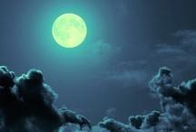 La Noche