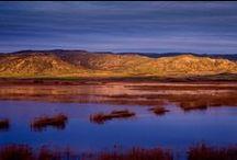 Ruta de los paisajes de #Navarra. / Busca estas señales!!! Recorre la Ruta de los paisajes de Navarra, y conoce los miradores más escénicos y los paseos de agua más refrescantes.  http://www.turismo.navarra.es/esp/organice-viaje/recurso.aspx?o=5873