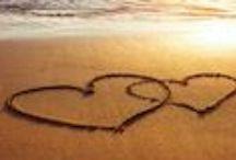 Vidensus - Liebeskummer / Hier findest Du interessante Tipps rund um das Thema Liebeskummer.