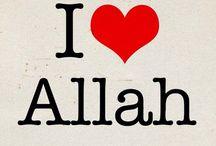 İslam / Büyük mutluluk